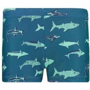 ZWEMBOXER SHARK